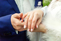 Hands of the bride and groom Royalty Free Stock Photos