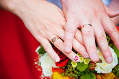 Bride and groom with wedding rings on hands Stock Photos