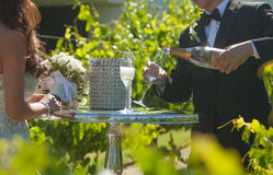 Bride and groom wedding sharing a toast. Bride and groom wedding with bouquet and sharing a toast with a glass of champagne Royalty Free Stock Photo