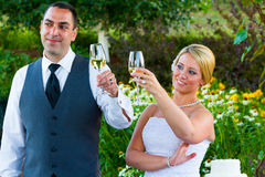 Bride and Groom Wedding Toasts Royalty Free Stock Photos
