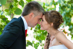 Bride and groom. The bride and groom at a wedding a walk in the park Stock Image