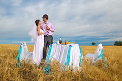 Bride and groom on the whea Stock Image
