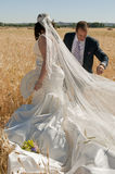 A bride and groom among the wheat Royalty Free Stock Photos