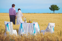 Bride and groom on the wheat field Stock Photography