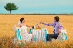 Bride and groom on the wheat field Stock Photos
