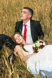 Bride and groom. On the wheat field Stock Photography