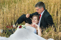 Bride and groom. On the wheat field Stock Image