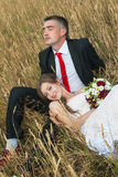 Bride and groom. On the wheat field royalty free stock images