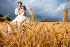 Bride and groom in wheat field with dramatic sky on the backgrou Stock Photos