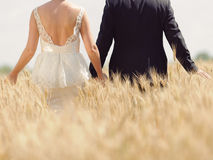 Bride and Groom in Wheat Field Stock Photo