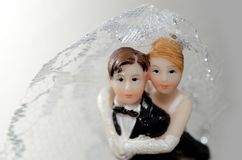 Bride and groom. For white background Stock Images