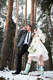 Bride and groom in winter forest Royalty Free Stock Photography