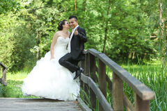 Bride and groom on wooden bridge in nature Royalty Free Stock Image
