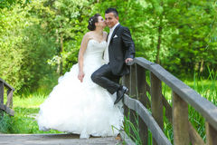 Bride and groom on wooden bridge Royalty Free Stock Images