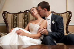 Bride and groom. Young happy Bride and groom Royalty Free Stock Image