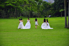 Bride. A group of a bride to shoot wedding photos Royalty Free Stock Images