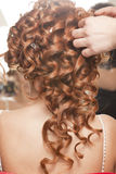 Bride hair Royalty Free Stock Photo
