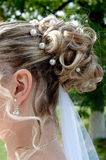 Bride hairdo stock image