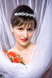 Bride hairstyle Royalty Free Stock Photos