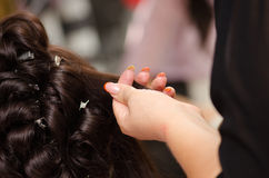 Bride hairstyling Stock Images