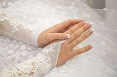 Bride hands. On the white dress background Stock Images