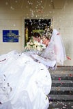 Bride at the hands of the groom Royalty Free Stock Photography