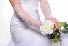 Bride hands with rose Royalty Free Stock Image