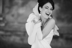 Bride. Happy luxurious elegant seductive bride Stock Photos