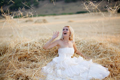 Bride in hay stack Stock Images