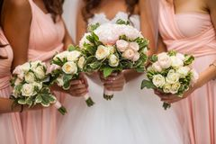 Bride and her bridesmaids stock photography