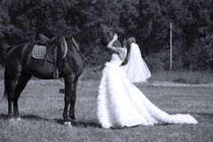 Bride and her horse Royalty Free Stock Image