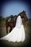 Bride and her horse Stock Photography