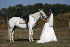 Bride with her horse Stock Image
