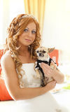 Bride and her pet Stock Images