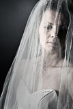 Bride in her Veil Royalty Free Stock Images