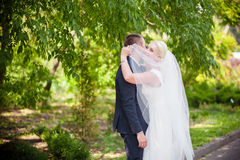 Bride hiding under a white veil Royalty Free Stock Image