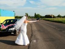 Bride hitch-hike at the road Royalty Free Stock Photo