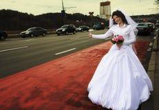 Bride hitchhiking Royalty Free Stock Image