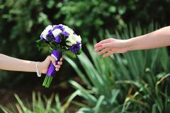Bride hold wedding bouquet Stock Images