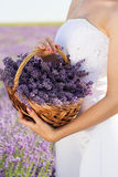 Bride holding basket with lavender flowers Stock Photography