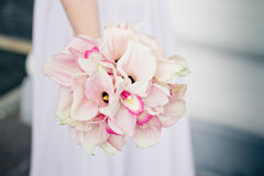 Bride holding bouquet of Calla lilies Stock Image