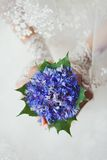 Bride holding bouquet of cornflowers Stock Photography