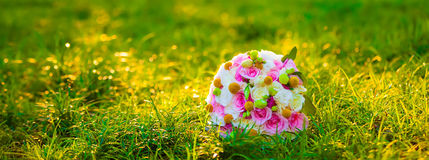 Bride holding flowers on the lawn Stock Images