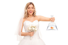 Bride holding a goldfish in a plastic bag Stock Photos
