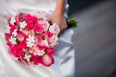 Bride holding bouquet of pink and white flowers. Bride holding beautiful wedding bouquet consisting of light pink roses, hot pink roses, pink calla lilies, and stock images