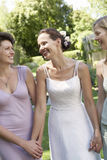Bride Holding Hands Of Female Friends Royalty Free Stock Image