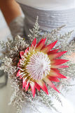 Bride holding her beautiful protea flower bouquet Stock Image