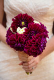 Bride Holding Maroon Flower Bouquet Stock Photography