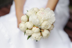 Bride holding peonies wedding bouquet Stock Photography
