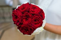 Bride holding rose red wedding bouquet of roses and love flowers Royalty Free Stock Images